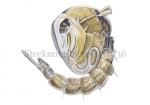 Steekmug-larve-14.1036
