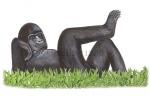 Gorilla-11226