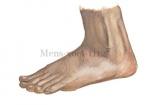 Mens-voet-11125