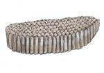 Steekmug-larve-14345