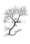 Duindoorn-struik-silhouet winter-182324