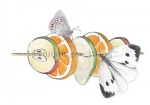Fruitslinger-310057