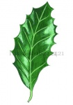 Hulst-blad-182421