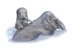 Olifant met jong-11251