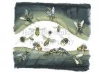 Honingbij-drukte bij de poort-14547