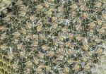 Honingbij-drukte op de raat-140035