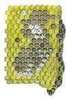Honingbij-raat-eitjes en larven-14452