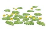 Gele plomp-bloem met bladeren-182599-1.jpg