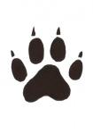 Wolf-pootafdruk-11271.jpg