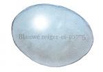 Blauwe reiger-ei-10775