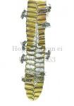 Honingbij-van ei tot bij-dwarsdoorsnede raat-14453