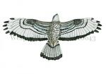 Wespendief-m-vliegbeeld-10643